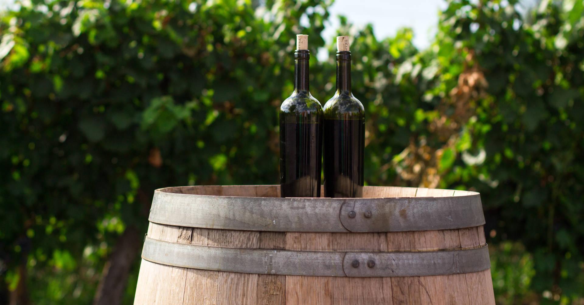 Pić wino czy degustować?