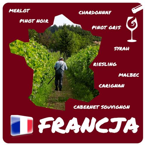 enoturystyka we Francji